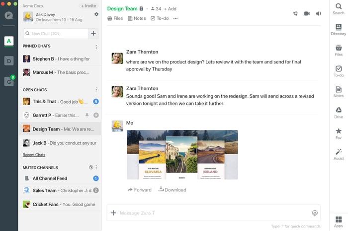 Screenshot view of Flock messenger.